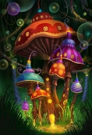 magic mushrooms волшебные грибы