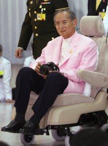 thais love pink