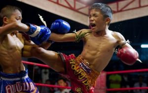 muay thai kids 4